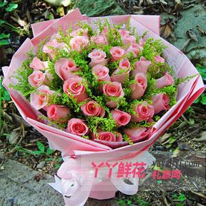 鲜花33支戴安娜粉玫瑰