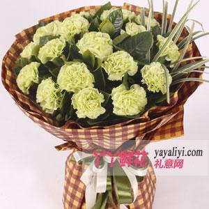 19朵绿康乃馨鲜花速递