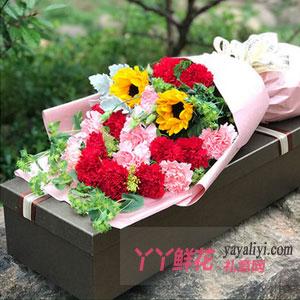 16枝双色康乃馨2枝向日葵