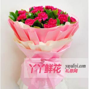 20枝红色桃红色粉色康乃馨