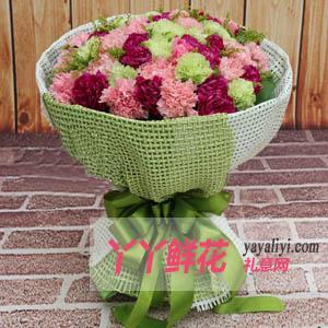 鲜花48枝混色康乃馨
