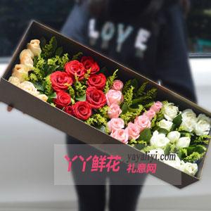 33枝混色玫瑰花束礼盒