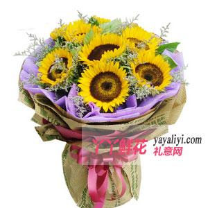 爱到永久 - 父亲节9支向日葵鲜花预定