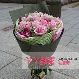 19支玛利亚粉玫瑰(情谊玛利亚)