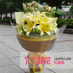 鲜花11支黄天霸百合送花(情义无价)