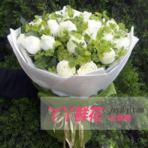 鲜花速递21支白玫瑰