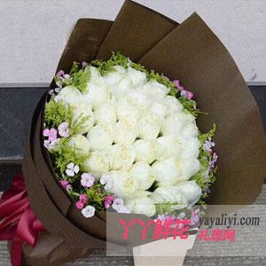 鲜花33枝白玫瑰