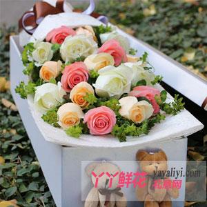 圣诞节19支混色玫瑰2只小熊礼盒