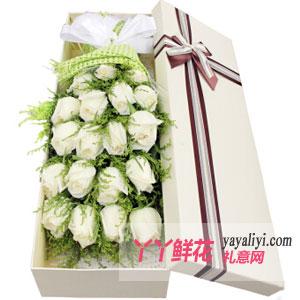 鲜花速递19枝白玫瑰礼盒