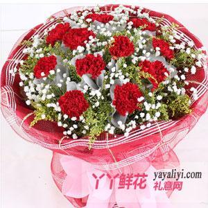 11朵康乃馨鲜花速递