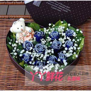 鲜花速递11枝蓝色妖姬花盒1小熊