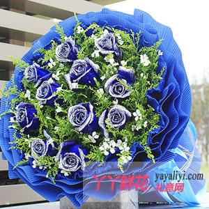 无可比拟的骄傲 - 鲜花11枝蓝色妖姬