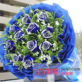 西安鲜花11枝蓝色妖姬