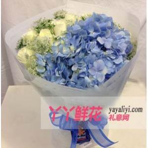 鲜花11支白玫瑰配绣球(淡雅)