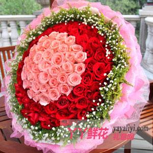温柔 - 99朵红玫瑰求婚表白道歉专用