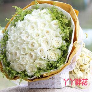 33朵粉玫瑰推荐:纯纯爱你