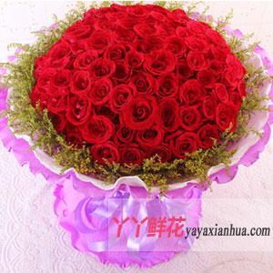 99朵红玫瑰网络情人节鲜花速递