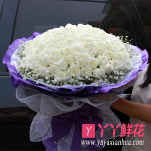 圣诞节鲜花99朵白玫瑰(一世倾情)