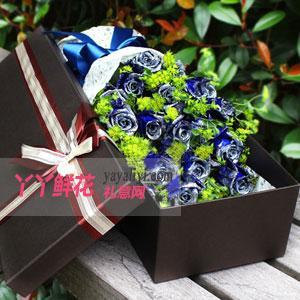 19朵蓝色妖姬深色鲜花礼盒