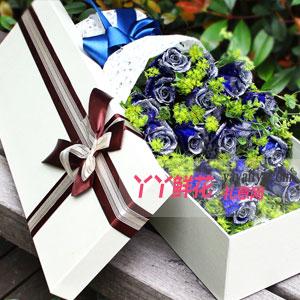 蓝色之恋 - 19朵蓝色妖姬浅色礼盒