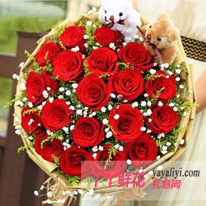 19朵红玫瑰2只小熊(一花一梦)