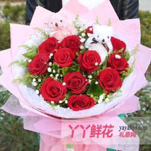 特价鲜花速递11朵红玫瑰2只小熊(爱在)