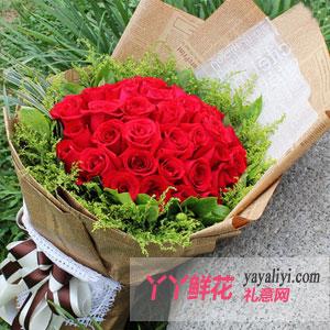 西安特价 33朵红玫瑰