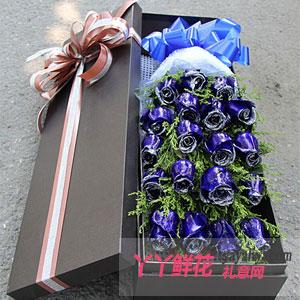 圣诞节19朵蓝色妖姬玫瑰(匆匆那年)