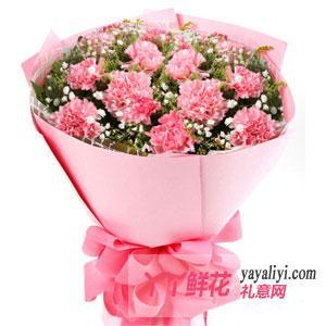 特价鲜花11支粉色康乃馨