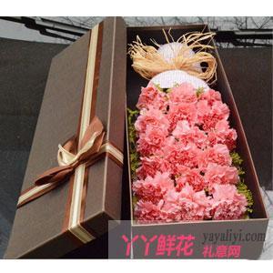 19朵粉色康乃馨高档礼盒