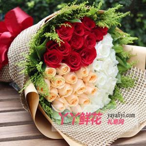 33朵三色玫瑰鲜花速递