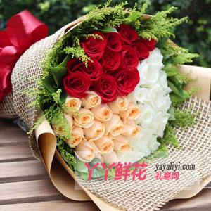 33朵三色玫瑰鲜花速递(真情告白)