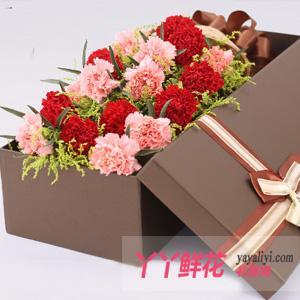 19朵混色康乃馨礼盒