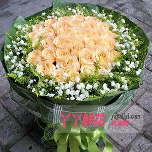 特价-33朵香槟玫瑰