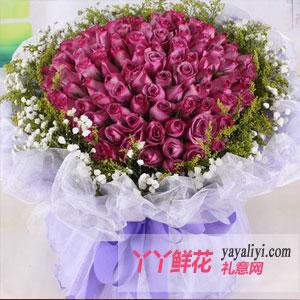 圣诞节99朵紫玫瑰(优雅女人香)