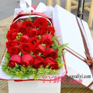 19朵红玫瑰奶白色礼盒