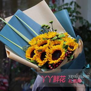 阳光满溢 - 10朵向日葵配小绿菊