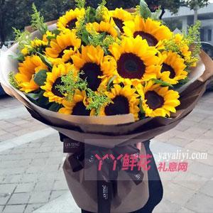 19朵向日葵黄莺搭配