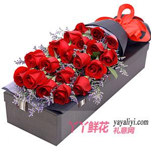 红色幸福 - 19朵红玫瑰情人草礼盒