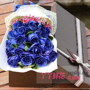 哼唱幸福 - 19朵蓝玫瑰相思梅/栀子叶礼盒