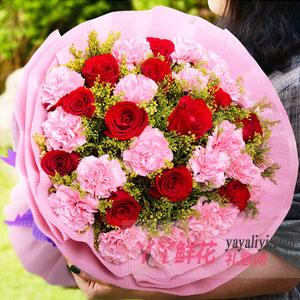 温馨祝福 - 17朵粉色康乃馨12枝红玫瑰