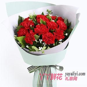 11枝红色康乃馨相思梅栀子叶
