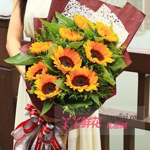 暖暖阳光 - 9朵向日葵黄莺间插
