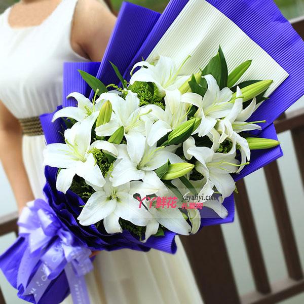 鲜花12朵白百合预订