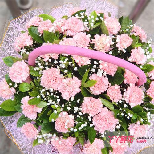 粉红康乃馨细节图