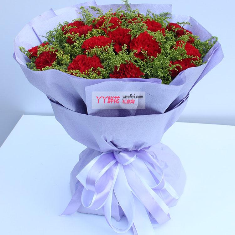 19枝红色康乃馨整体效果图