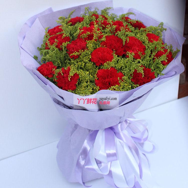 19枝红色康乃馨侧拍图