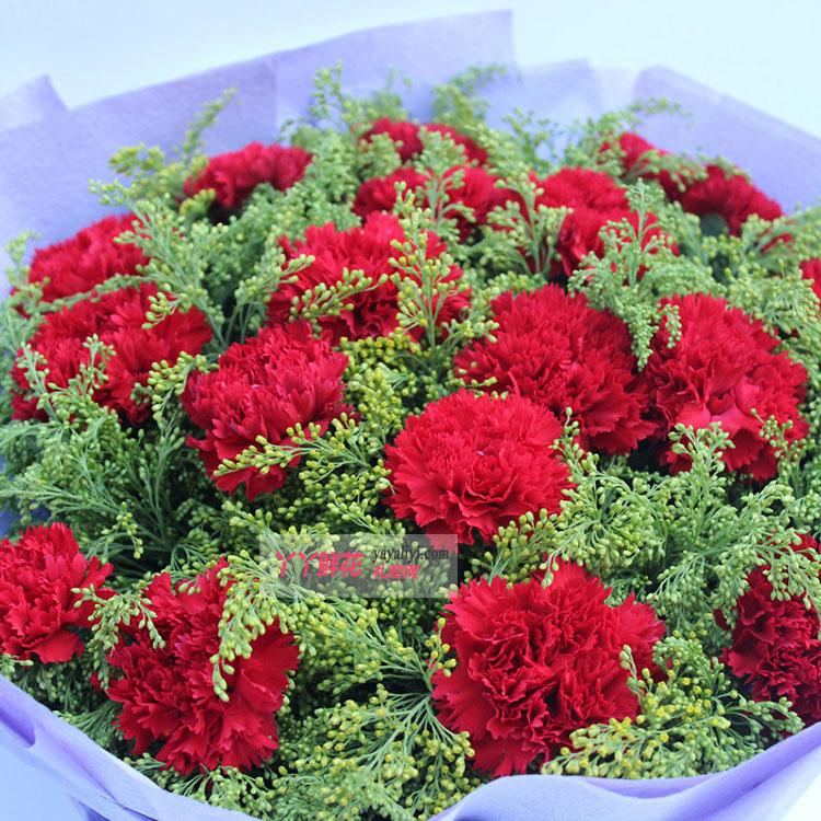 19枝红色康乃馨花朵细节图