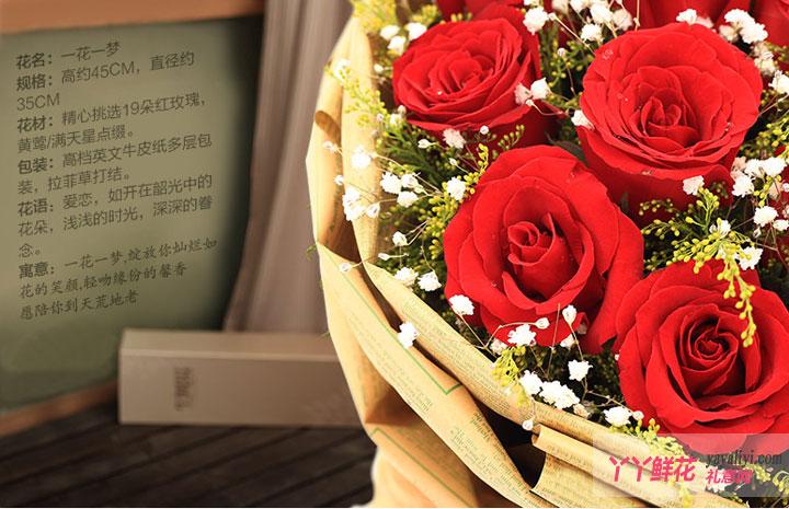 鲜花19朵红玫瑰2只小熊(一花一梦)细节图