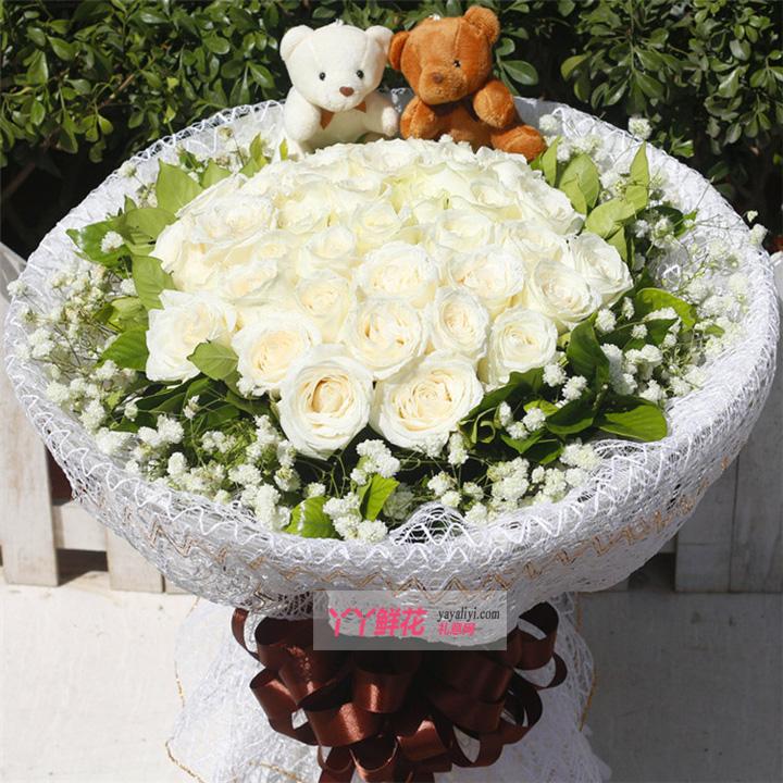 鲜花速递33朵极品白玫瑰(一个清新的世界)
